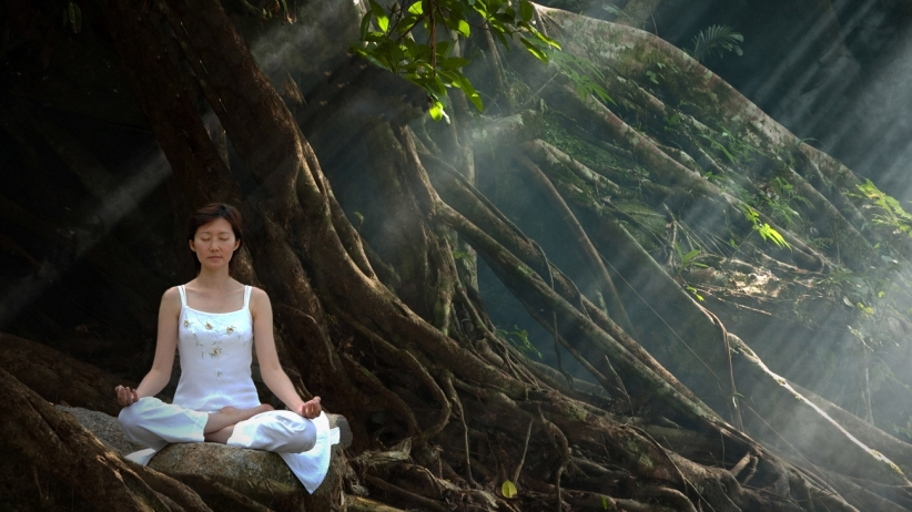 20150528205710-yoga-zen-peaceful-meditation-quiet-forest